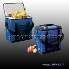 12V car fridge Thermoelectric cooler&Warmer (HPNS-911)