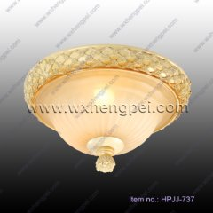 Popular Art Ceiling Lamps(HPJJ-737)